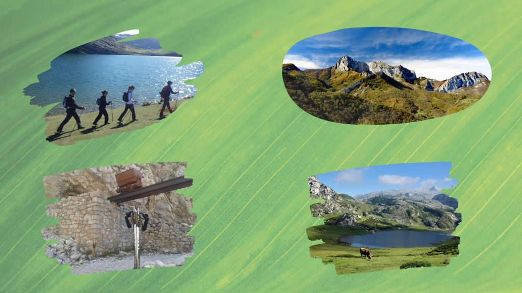 Picos de Europa y Fotos actividad Parque Natural de Ponga