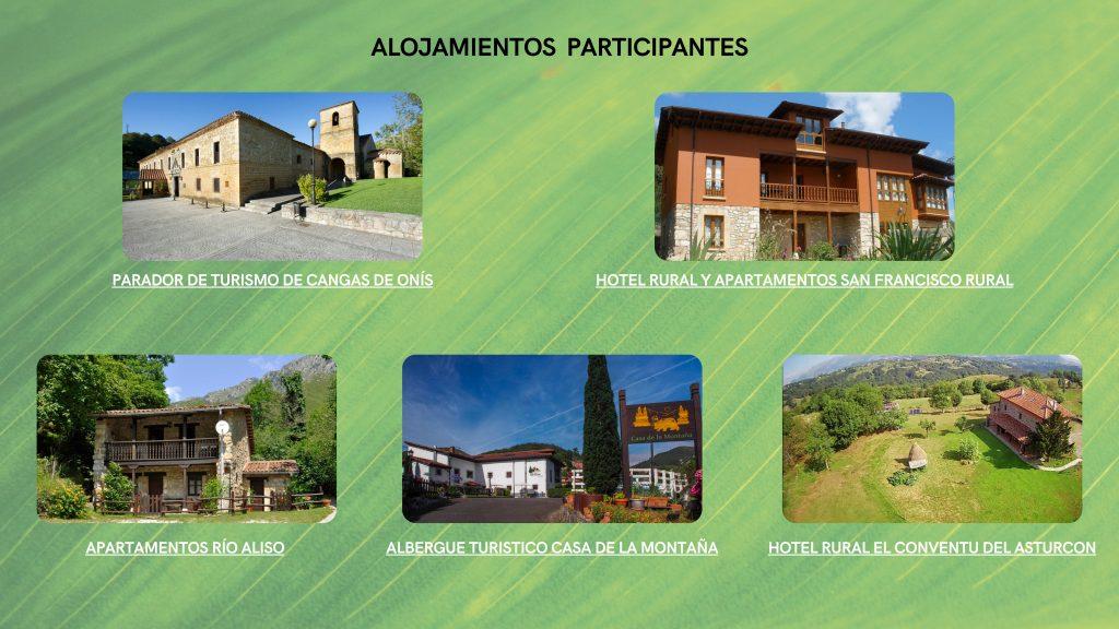 Alojamientos Picos de Europa y Parque Natural de Ponga